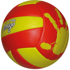 Amigo Volleyball